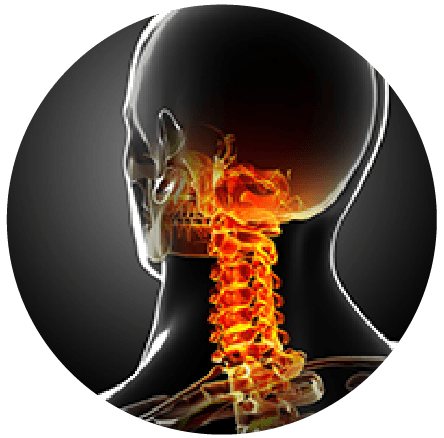 Xray and ultrasound referral